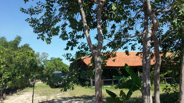 Fazenda com 6.000Ha à margem do Rio Preto! Em Mansidão BA. A 60km de Santa R. de Cassia - Foto 19