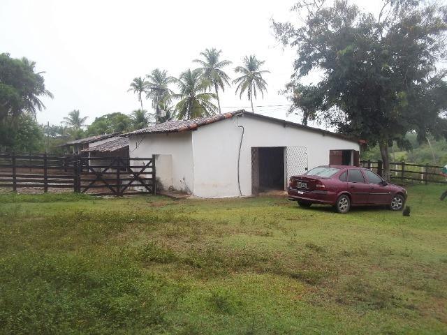 Fazenda com 110 há a 20 km de macaíba, 4 casas, 3 poços, riacho, barreiro - Foto 16