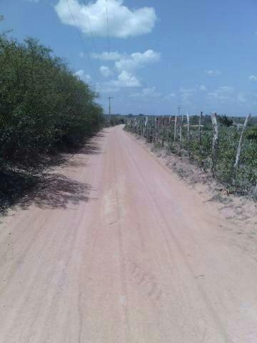 Terra no Sítio Lagoa Redonda Zona Rural de São Pedro RN What * - Foto 7