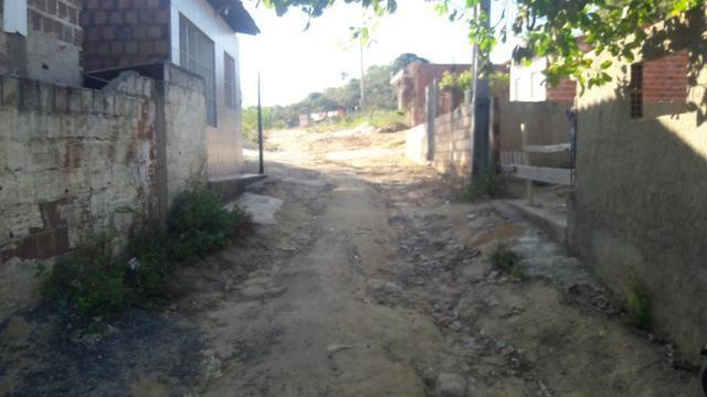 Terreno na entrada de Tamandaré PE - Foto 3