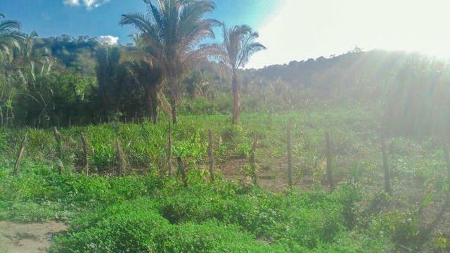 Vendo Fazenda de 122 hectares com psicultura - Foto 5