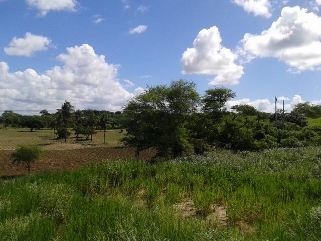 Fazenda com 62 há na br 304, com rio potengi, casa, deposito - Foto 12
