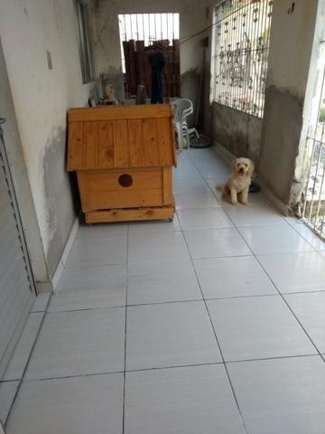 Casa em Sucupira com 3 quartos sendo 1 suíte - Foto 11