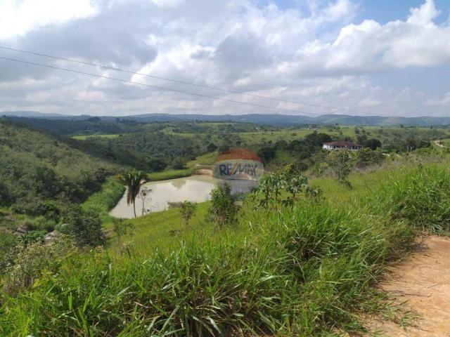 Fazenda com 4 dormitórios à venda, 800000 m² - zona rural - gravatá/pe - Foto 8