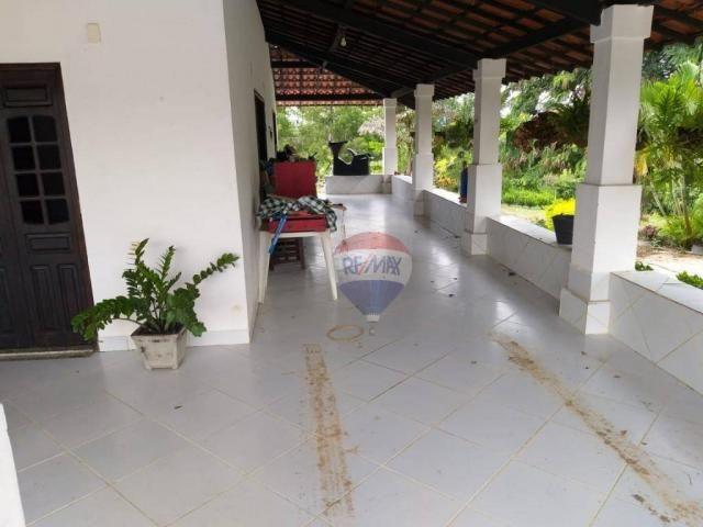 Fazenda com 4 dormitórios à venda, 800000 m² - zona rural - gravatá/pe - Foto 4