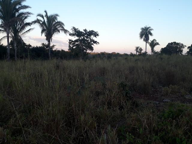 Chácara a 11 km de Acorizal - Foto 8