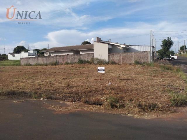 Terreno à venda, 200 m² por R$ 60.000 - Jardim Santos Dumont - Paranavaí/Paraná - Foto 3