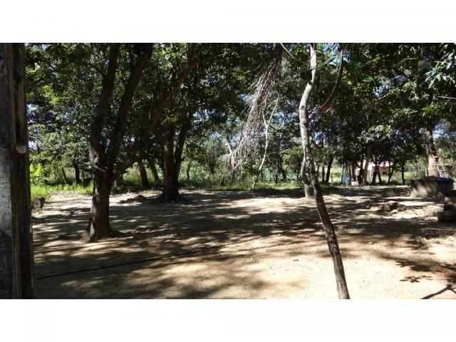 Chácara à venda com 3 dormitórios em Jardim potiguar, Varzea grande cod:15475 - Foto 7