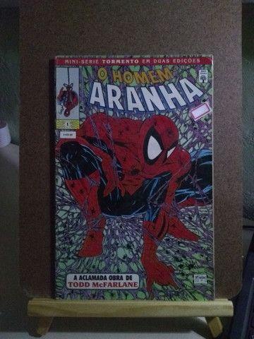 Homem-Aranha Tormento #1