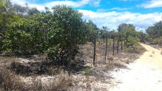 Terreno Massarandupió - 3 lotes de 300 m - Negociável