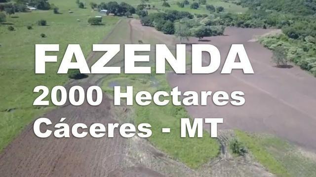 Fazenda de Soja/Gado 2.000 Hecs em Caceres-MT c/ 1000 aberto