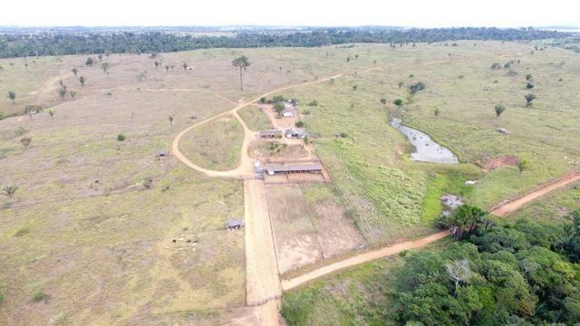 Fazenda no Jaru - RO - 2662 hectares
