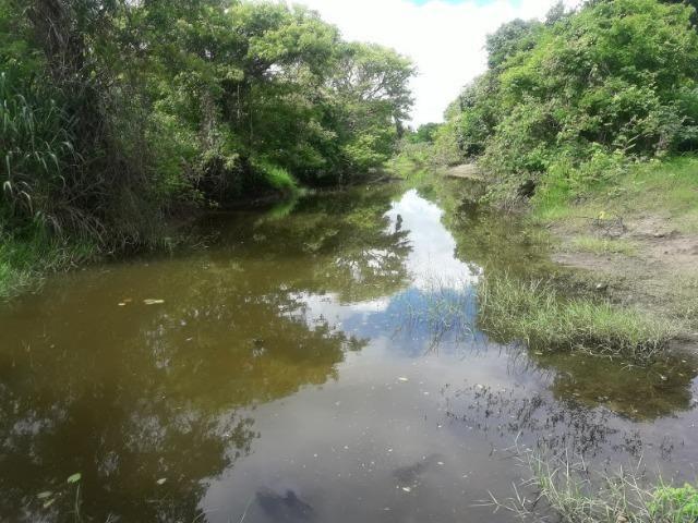 Propriedade à 50 km de joão Pessoa com pastagem e água excelente Para Pecuaria