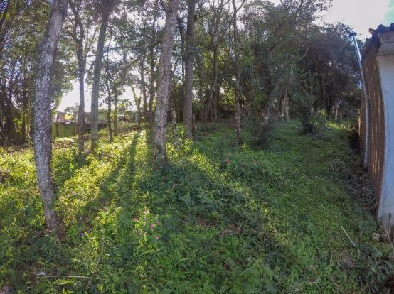 Terreno à venda em Vila luiza, Passo fundo cod:7926 - Foto 4