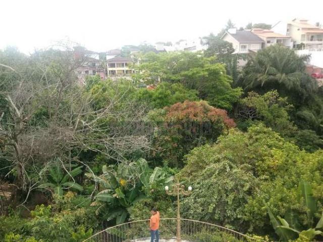 Sítio com 1.600 m2 total com árvores frutíferas - Foto 6