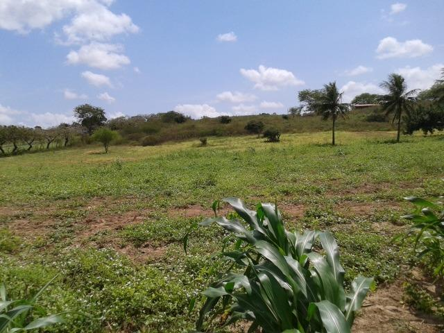 Fazenda com 62 há na br 304, com rio potengi, casa, deposito - Foto 17