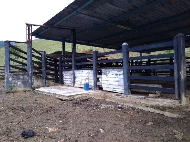 Fazenda Viana 20 alqueires - Foto 13