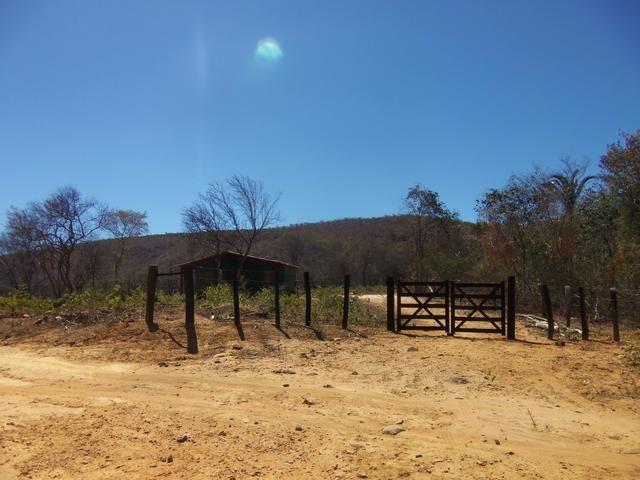 Fazenda com 6.000Ha à margem do Rio Preto! Em Mansidão BA. A 60km de Santa R. de Cassia - Foto 12