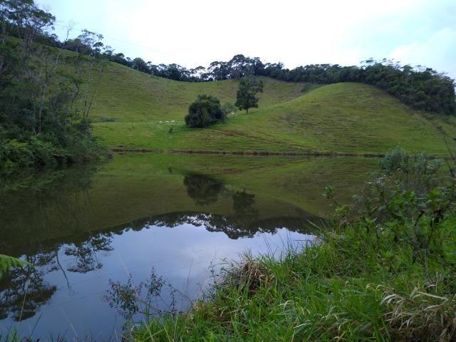 Fazenda Viana 20 alqueires - Foto 12