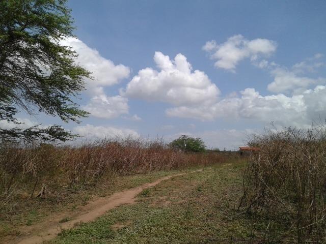 Fazenda com 62 há na br 304, com rio potengi, casa, deposito - Foto 18