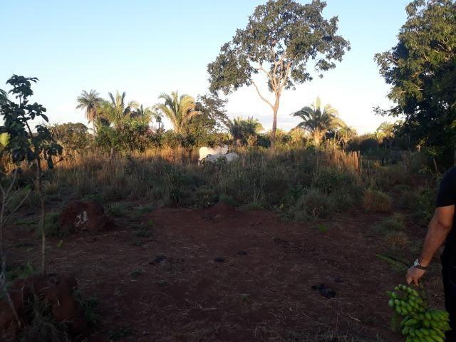 Chácara a 11 km de Acorizal - Foto 6