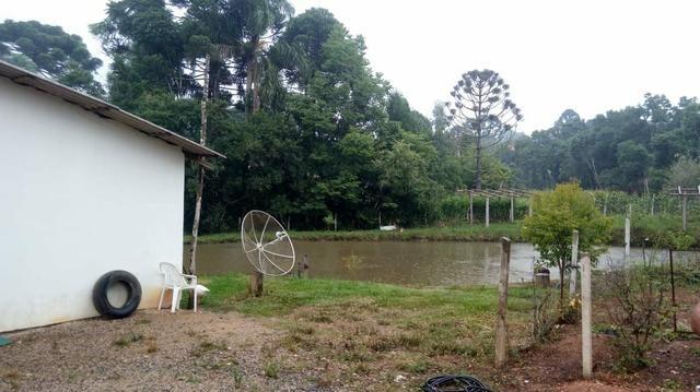 Torro Linda chacara em Agudos do Sul - Foto 5