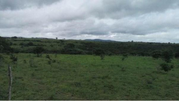 Fazenda à venda, 12620000 m² por R$ 22.000.000,00 - Aeroporto - Feira de Santana/BA - Foto 8