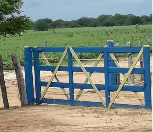 Fazenda à venda, 18400000 m² por R$ 8.000.000,00 - Zona Rural - Pilão Arcado/BA - Foto 11