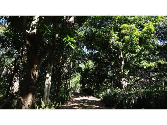 Chácara à venda com 3 dormitórios em Jardim potiguar, Varzea grande cod:15475 - Foto 8