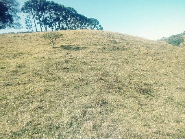 Loteamento Novo de Chácaras, todas acima de 5.000m², Bairro Monteiro, Delfim Moreira-Mg - Foto 3