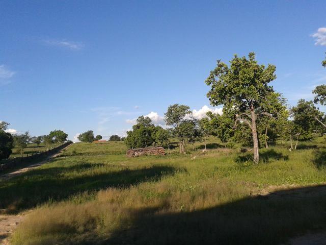 Fazenda com 6.000Ha à margem do Rio Preto! Em Mansidão BA. A 60km de Santa R. de Cassia - Foto 10