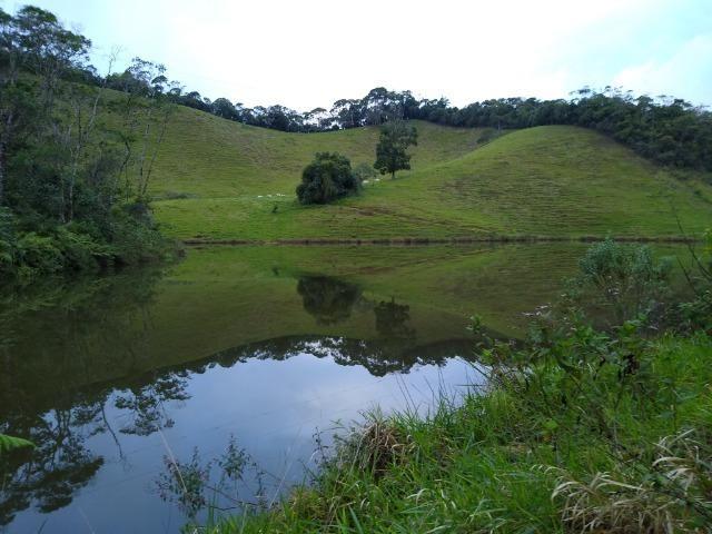 Fazenda Viana 20 alqueires - Foto 11