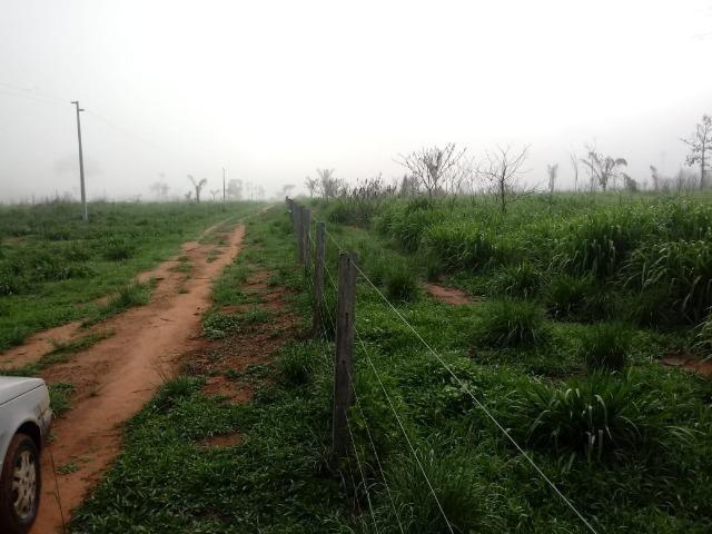 Vendo Fazenda em Novo Prigresso/PA - Foto 18