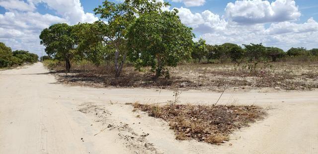 Terrenos na Serra de Santana! Próximo a Lagoa Nova RN - Foto 7