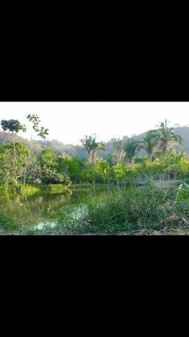 Vendo Fazenda de 122 hectares com psicultura - Foto 14