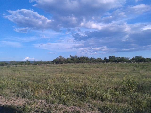 Fazenda com 6.000Ha à margem do Rio Preto! Em Mansidão BA. A 60km de Santa R. de Cassia - Foto 7