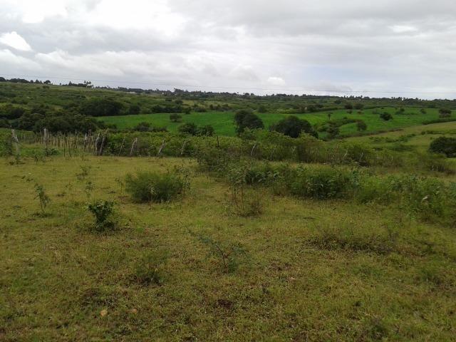 Fazenda com 63 há em brejinho, 10 barreiros, curral - Foto 11