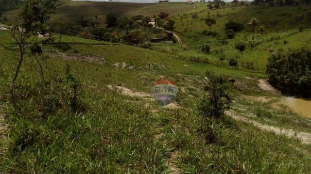Fazenda com 4 dormitórios à venda, 800000 m² - zona rural - gravatá/pe - Foto 35