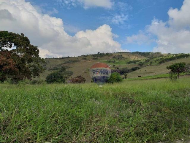 Fazenda com 4 dormitórios à venda, 800000 m² - zona rural - gravatá/pe - Foto 9
