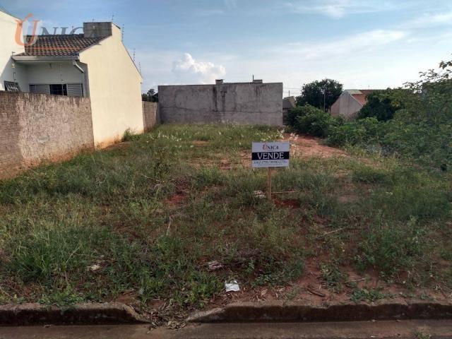 Terreno à venda, 227 m² por R$ 60.000 - Distrito Sumaré - Paranavaí/Paraná - Foto 2