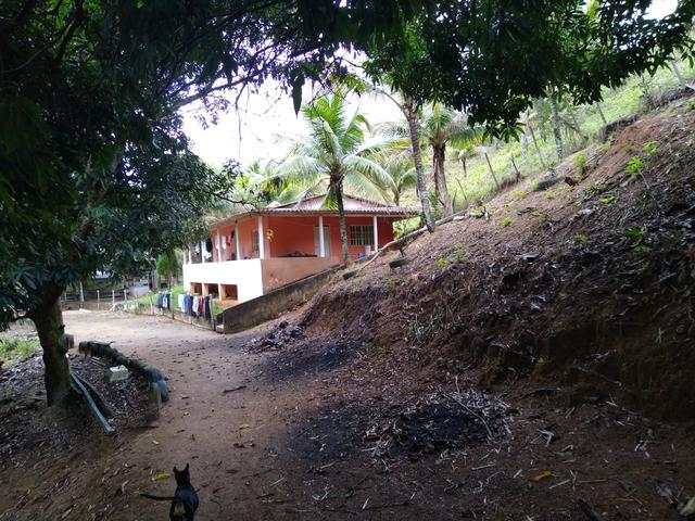 Sitio Viana 5 alqueires