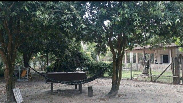 Vendo chácara  - Foto 4