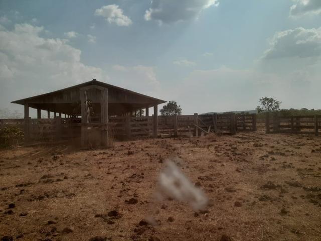 Fazenda venda ou arrendamento lavoura paranatinga - Foto 3