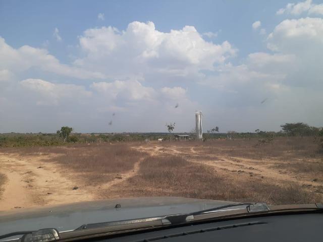 Fazenda venda ou arrendamento lavoura paranatinga - Foto 10