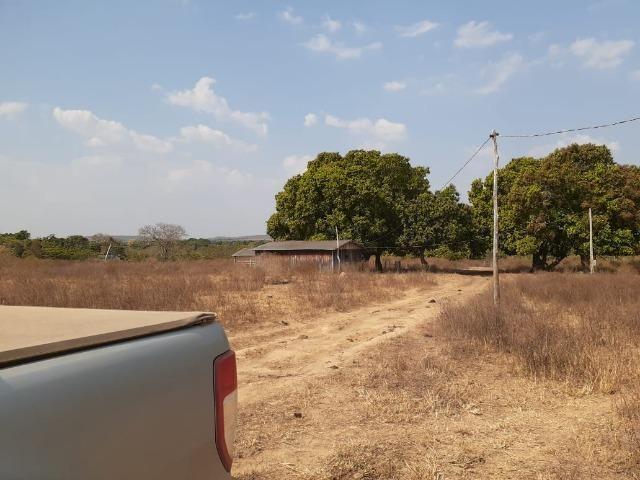 Fazenda venda ou arrendamento lavoura paranatinga - Foto 5