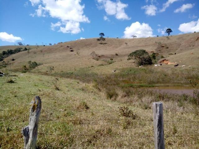 Área Guara x Cunha - Foto 11