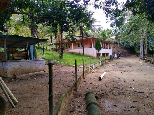 Sitio Viana 5 alqueires - Foto 3