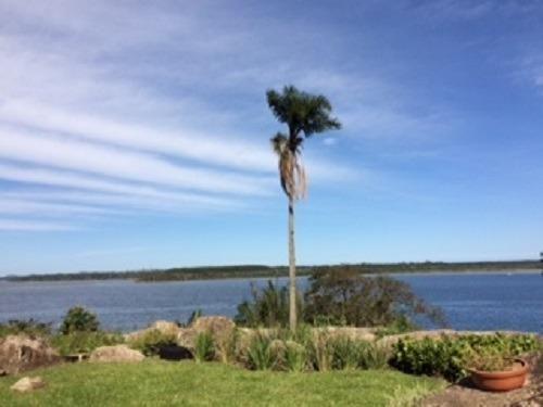 Terreno grande com casa na Costa da Lagoa