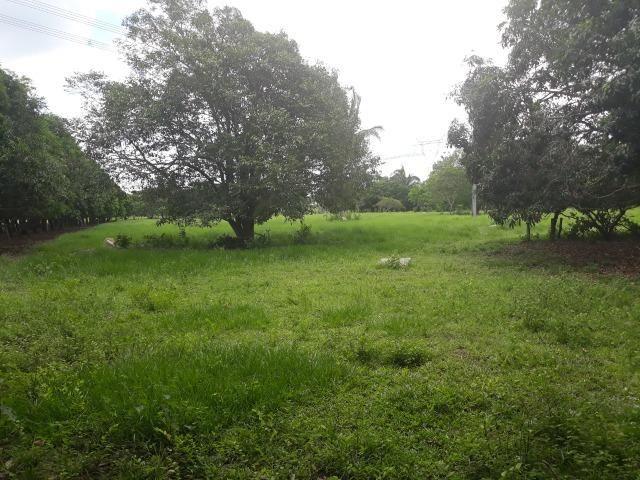 Vendo - Troco Chácara 12 Hectares - Foto 5