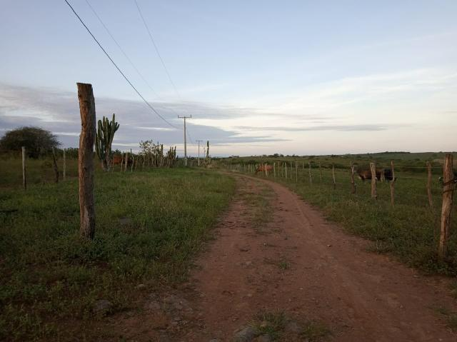 Fazenda Malhada Nova - Foto 5